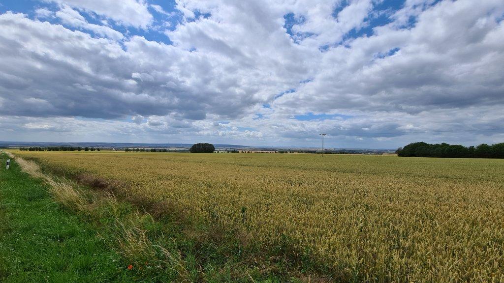 Blick auf Thüringen